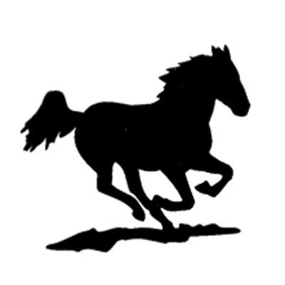 Mustang Pferdesport GmbH